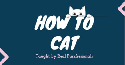 """a thumbnail which is all navy color with the white text of """"how to cat"""" taught by real purrfessionals, and a small animated kitten looking down, it is a thumbnails to a list of inforgraphic on how to act like a cat"""
