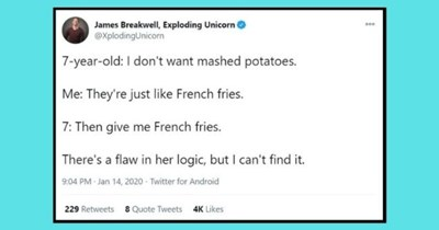 funny tweets showing kid logic no one can argue with   thumbnail Text - James Breakwell, Exploding Unicorn @XplodingUnicorn 000 7-year-old: I don't want mashed potatoes. Me: They're just like French fries. 7: Then give me French fries. There's a flaw in her logic, but I can't find it. 9:04 PM Jan 14, 2020 - Twitter for Android 229 Retweets 8 Quote Tweets 4K Likes
