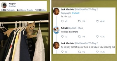 viral tweets about a cat hanging out in clothing hangers | thumbnail includes a picture of a cat stuck in clothing hanger and three tweets 'Font - Jack Manifold @JackManifoldTV Replying to @schlatt let him out 9:47 PM · May 2, 2021 · Twitter for Android 124 Retweets 14 Quote Tweets 48.9K Likes' 'Azure - Schlatt @jschlatt Replying to @JackManifoldTV and @schlatt He likes it up there 9:52 PM · May 2, 2021 - Twitter for iPhone 144 Retweets 2 Quote Tweets 47.4K Likes' and 'Font - Jack Manifold @Jac'