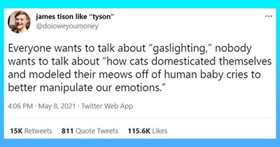 "informative viral tweets about funny cat facts | thumbnail includes one tweet 'Font - james tison like ""tyson"" @doioweyoumoney ... Everyone wants to talk about ""gaslighting,"" nobody wants to talk about ""how cats domesticated themselves and modeled their meows off of human baby cries to better manipulate our emotions."" 4:06 PM · May 8, 2021 Twitter Web App 15K Retweets 811 Quote Tweets 115.6K Likes'"