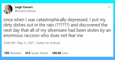 this week's collection of animal tweets | thumbnail includes one tweet 'Font - Leigh Cowart ... @voraciousbrain once when I was catastrophically depressed, I put my dirty dishes out in the rain (??????) and discovered the next day that all of my silverware had been stolen by an enormous raccoon who does not fear me 10:46 PM - May 11, 2021 Twitter for Android 10K Retweets 412 Quote Tweets 186.6K Likes'