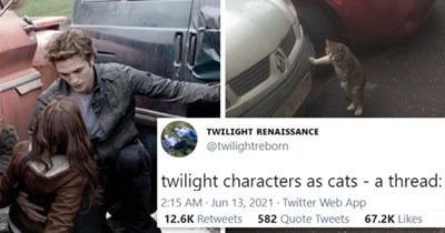 viral twitter thread of Twilight characters as cats   thumbnail includes two pictures including Edward saving Bella from a car and a cat with its paw on a car 'Automotive parking light - TWILIGHT RENAISSANCE @twilightreborn twilight characters as cats - a thread: 2:15 AM Jun 13, 2021 - Twitter Web App 12.4K Retweets 578 Quote Tweets 66.2K Likes'