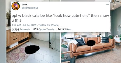 """tweets appreciating black cats 