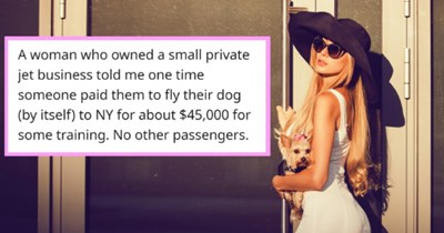 People Who Work With The Super Rich Call Out The Wild Things They've Seen| thumbnail text - aticho · 8h S A woman who owned a small private jet business told me one time someone paid them to fly their dog (by itself) to NY for about $45,000 for some training. No other passengers.