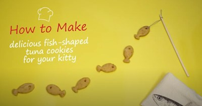 """A yellow background photo of fish shaped cookies and a text on it that says """"how to make delicious fish shaped tuna cookies for your kitties"""" on it"""