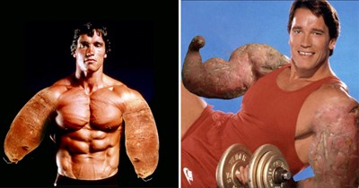 Funny photos of Arnold Schwarzenegger photoshopped so that his arms are sweet potatoes.