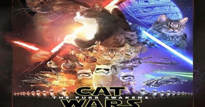 a funny list of cat wars the purr awakens