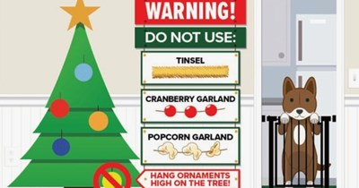 christmas dogs tips pooch safety holidays - 4251397