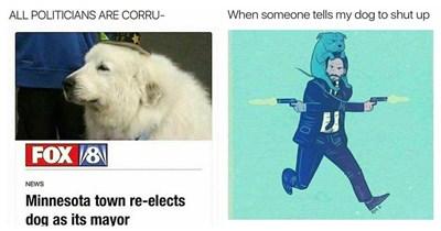 Doggo memes.