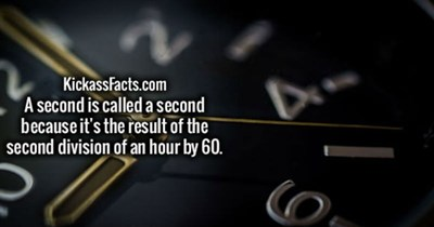 Collection of fun facts to keep you entertained with new bits of knowledge.