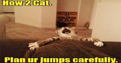 lolcats I Can Has Cheezburger edition funny memes kitten Memes funny cats Cats funny cat memes - 5373957