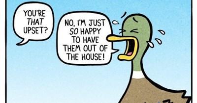funny comics back to school animals web comics - 6500869