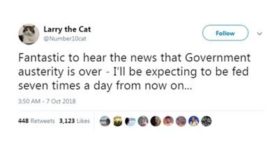 tweeting downing-st cat tweets UK funny tweets Cats - 7142149
