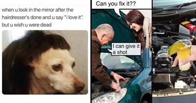 procrastination random memes funny memes boredom pointless memes dog memes animal memes tinder the office miley cyrus - 7155973