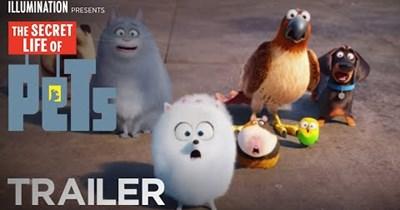 secret life of pets trailers Video - 77854465