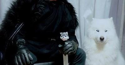 costume Jon Snow dogs ghost halloween Game of Thrones - 7878060800