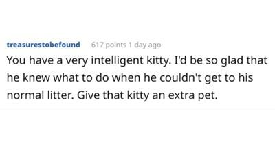 litterbox askreddit funny cats Cats - 8003845