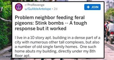 revenge story on reddit about pigeon feeder