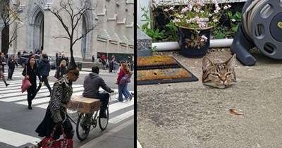 Images of confusing perspective that result in optical illusions.
