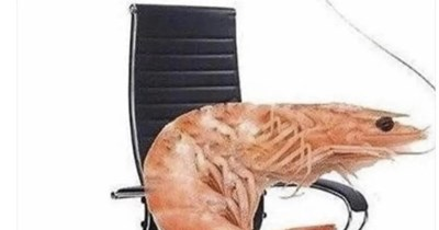 Funny Memes, Relatable Memes, Stupid Memes   My back hurts all the time for no reason. How I sit every day: shrimp in an office chair