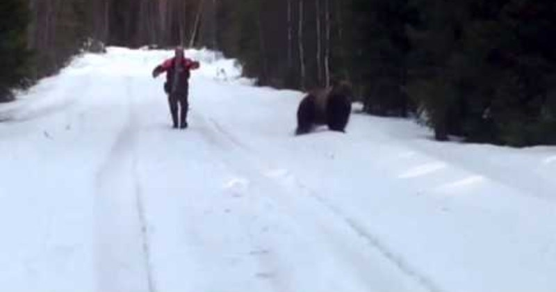 Video of a guy scaring a bear with a shout.