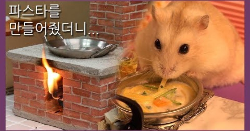 Man Builds A Miniature Kitchen Where He Cooks A Miniature Pasta For His Hamster