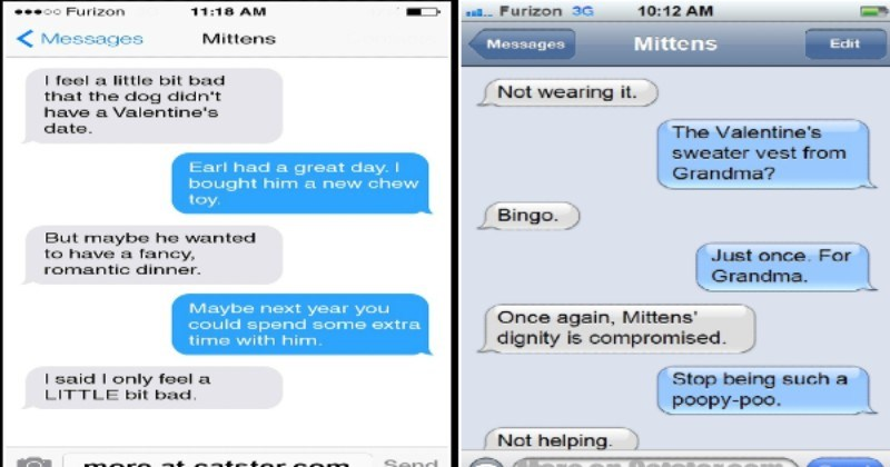 Texts From Mittens: The Valentines Day Edition