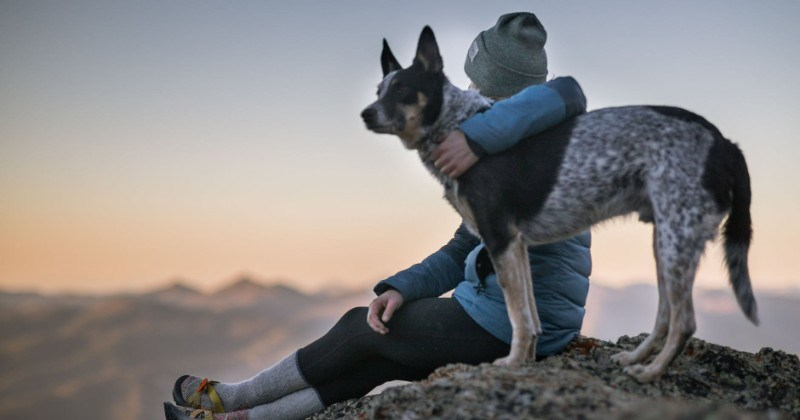 """Heartwarming Photos Of Pets And Their Owners For National """"Love Your Pet Day"""""""