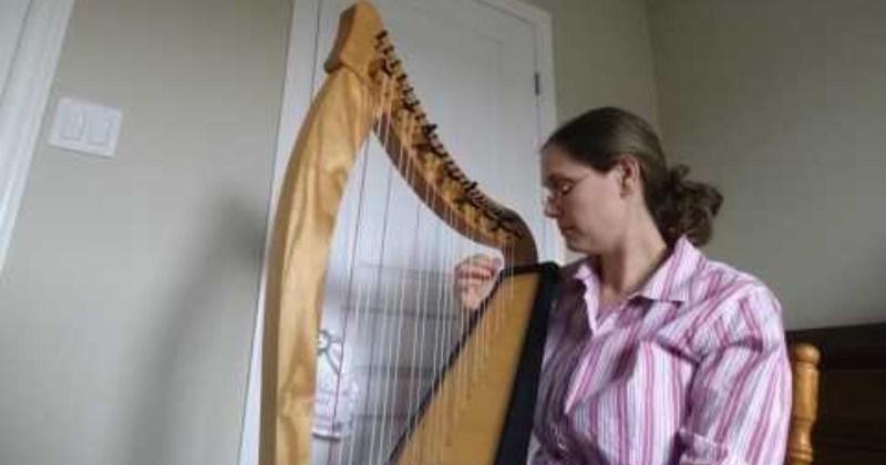 surprising Music harp reaction funny Video - 106727169
