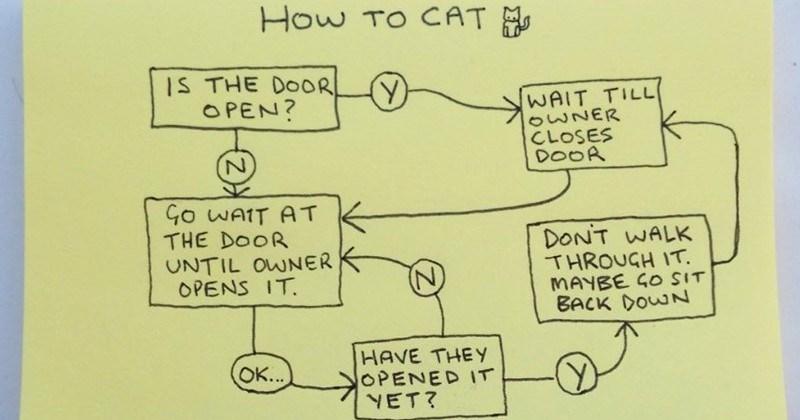 Brutally Honest Handmade Graphs About Animals