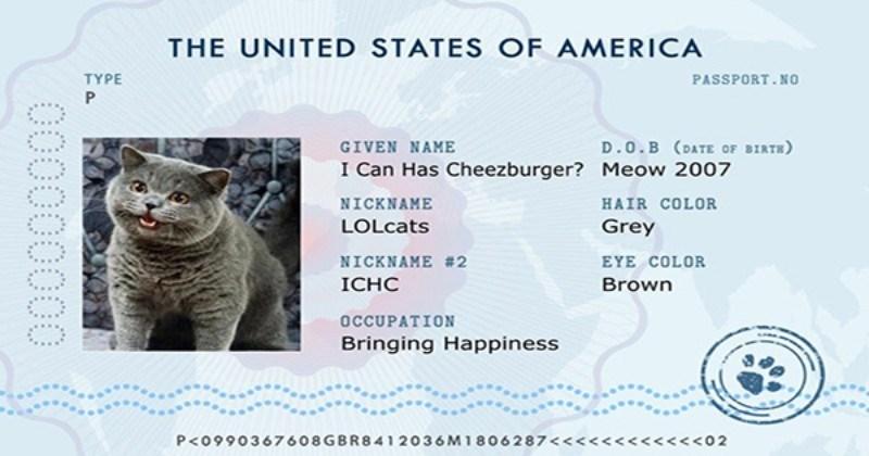 ICanHasCheezburger Is Proud to Presents The 'Pet Passport'