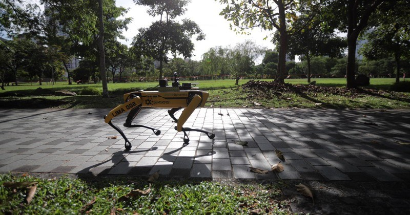 Meet Spot, The Robot Dog Patroling Singapore Parks To Encourage Social Distancing