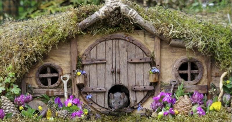 Wildlife Photographer Creates Miniature Hobbiton For Family Of Mice