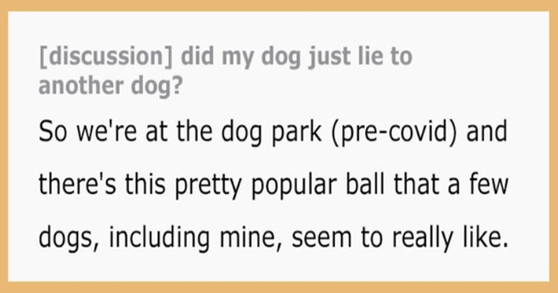 "Dog Owner Caught His Pup ""Lying"" To Another Dog At The Park"