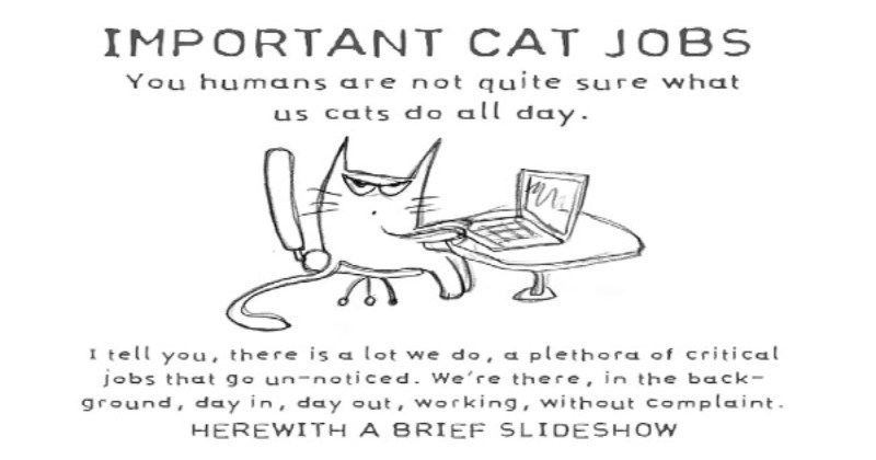 A Long List Of Important Cat Jobs In Case You Wonder What They Do All Day (Comics)