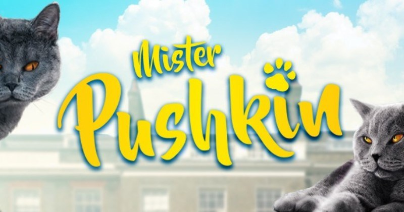 The Mischievously Funny Tales Of Mister Pushkin, The Cheeky Cat
