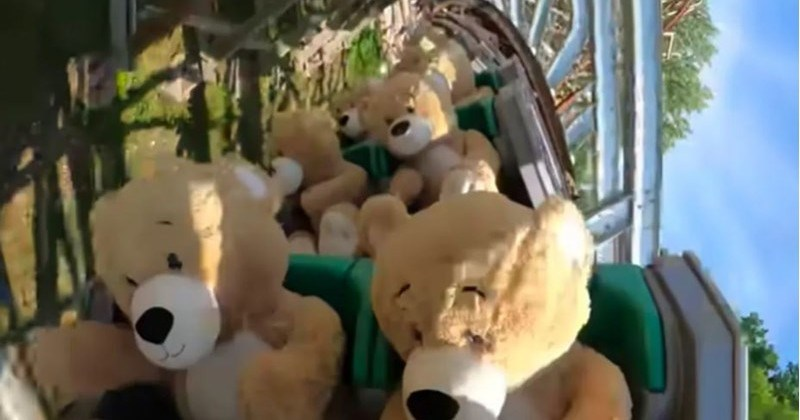 Amusement Park Straps In Giant Teddy Bear For Thrilling Ride