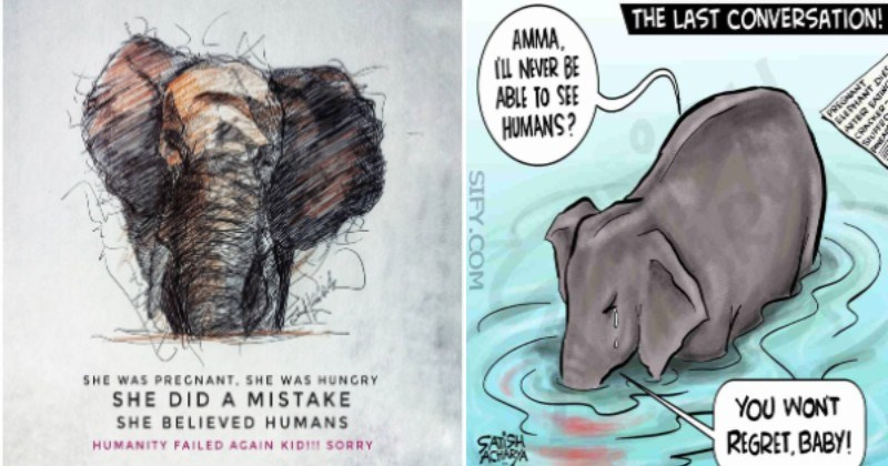 The Tragic Death Of a Pregnant Elephant Sparks Outrage For Human Cruelty | SHE was pregnant WAS HUNGRY SHE DID A MISTAKE SHE BELIEVED HUMANS | LAST CONVERSATION! AMMA. i'll never be able to see humans? YOU WON'T REGRET BABY