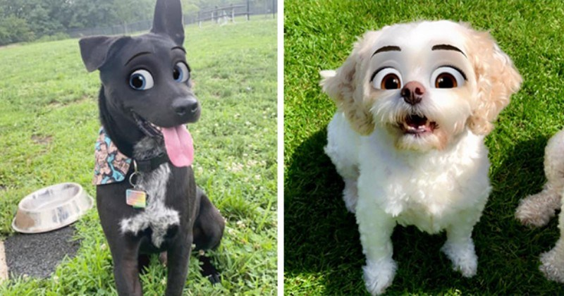 Snapchat S Cartoon Filter Turns Pets Into Real Life Disney Characters Mimic News