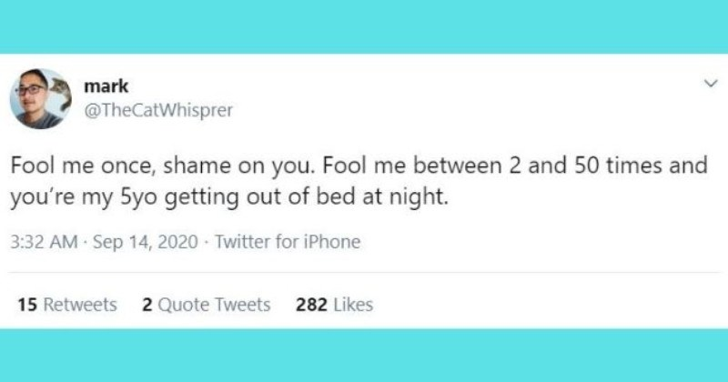 funniest parenting tweets of the week - thumbnail | Text - mark @TheCatWhisprer Fool me once, shame on you. Fool me between 2 and 50 times and you're my 5yo getting out of bed at night.