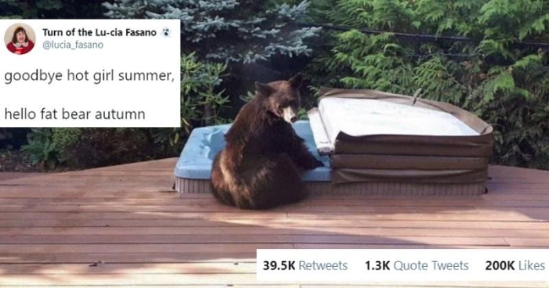 Funny And 'Bearable' Bear Tweets