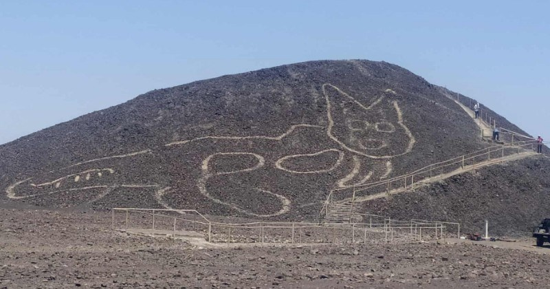discovery of 2000 year old cat drawing in the desert of peru - thumbnail of discovered etched feline nazca lines