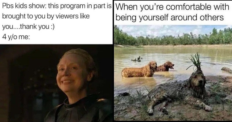 Wholesome Memes To Stoke That Positivity