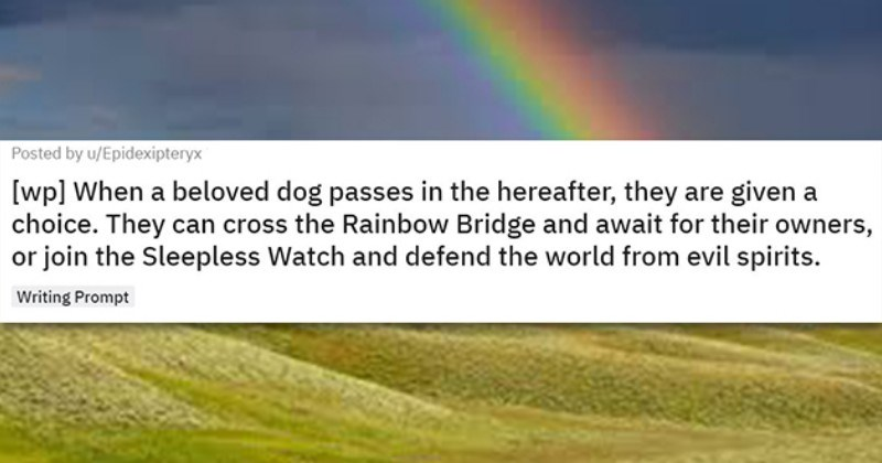 Redditor Writes Heartbreaking Prompt About Dogs In The Afterlife