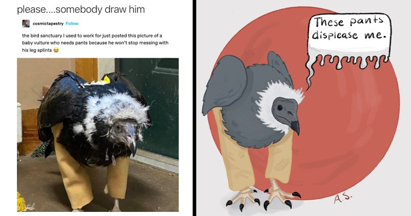 Funny tweets and drawings of vulture wearing pants, baby bird, art, illustration