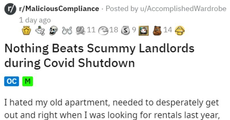 Spurned Tenant Spams Crap Landlord With Notices