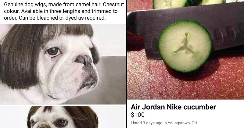 Weird, Awful and Wild Junk People Tried Selling Online