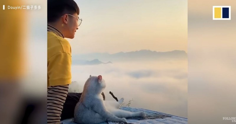 Man And His Cat Travel Across China (Video)