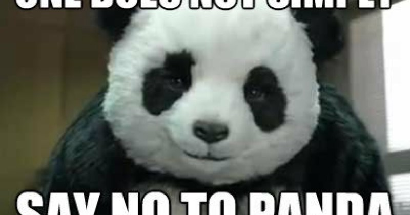 30 Of The Funniest And Cutest Panda Memes On The Web I Can Has