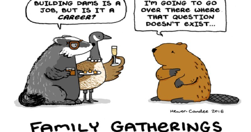 Comics 7 Problems Animals Face During The Holidays Season